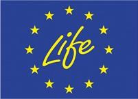 life-sm.jpg