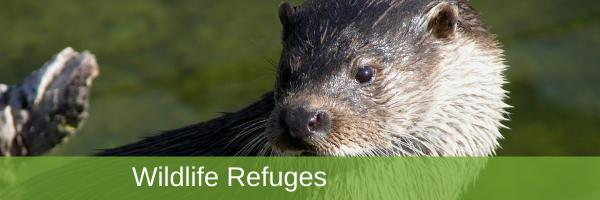 EN homepage – Slide1 – Wildlife Refuges