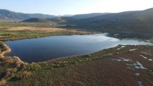 Moustos_wetland