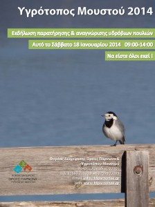 Every bird counts_poster