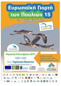 Poster_eurobirdwatch 2015