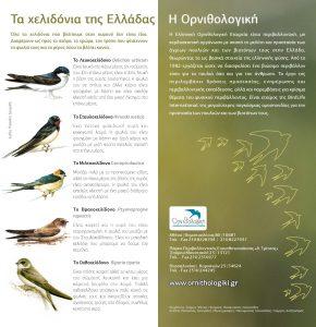 Enhmerwtiko_Yliko_Xelidonia_1 (1)