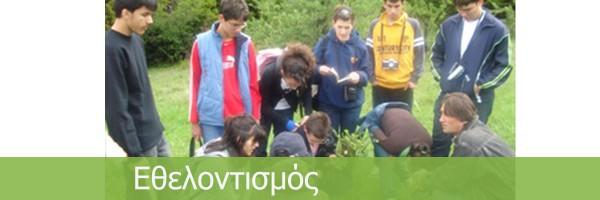 14 – Volunteering